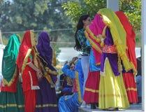 Αυξήθηκε φεστιβάλ, πολιτιστικός παρουσιάστε, Chandigarh, Ινδία Στοκ Εικόνα