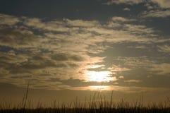 Αυξανόμενη και σπάζοντας γούρνα ήλιων τα λίγα σύννεφα πέρα από ένα χλοώδες έδαφος Στοκ Φωτογραφίες