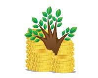 Αυξανόμενο δέντρο χρημάτων Στοκ Φωτογραφίες