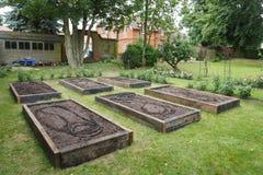 Αυξημένα κρεβάτια στο φυτικό κήπο στοκ εικόνα