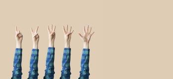 Αυξημένος επάνω στην παρουσίαση χεριών και δάχτυλων αριθμητική Στοκ φωτογραφία με δικαίωμα ελεύθερης χρήσης