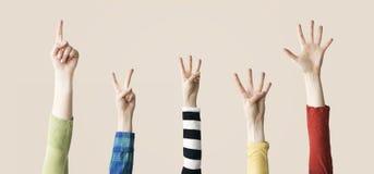 Αυξημένος επάνω στην παρουσίαση χεριών και δάχτυλων αριθμητική Στοκ φωτογραφίες με δικαίωμα ελεύθερης χρήσης