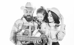 Αυξημένος με την αγάπη Οι γονείς και η κόρη γιορτάζουν το απομονωμένο συγκομιδή λευκό λαχανικών κηπουρών οικογενειακών αγροτών συ στοκ φωτογραφίες