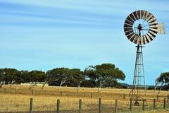 Αυστραλία, δυτική Αυστραλία, αγρόκτημα Στοκ Φωτογραφίες