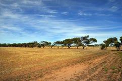 Αυστραλία, δυτική Αυστραλία, φύση Στοκ Εικόνα