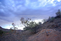 Αυστραλιανή έρημος Στοκ εικόνες με δικαίωμα ελεύθερης χρήσης