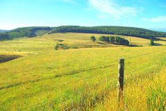 αυστραλιανό τοπίο αγροτικό Στοκ Φωτογραφία