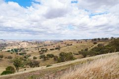 Αυστραλιανό τοπίο εσωτερικών με τους λόφους και τις μάντρες στοκ φωτογραφία
