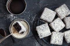 Αυστραλιανά κέικ lamington με τη σοκολάτα και την καρύδα στοκ εικόνα με δικαίωμα ελεύθερης χρήσης