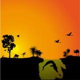 Αυστραλιανές πανίδα και χλωρίδα Στοκ φωτογραφία με δικαίωμα ελεύθερης χρήσης