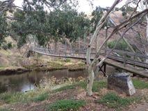 Αυστραλιανή γέφυρα του Μπους Στοκ φωτογραφία με δικαίωμα ελεύθερης χρήσης