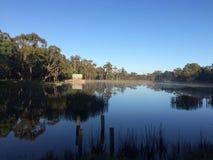 αυστραλιανός θάμνος στοκ φωτογραφίες με δικαίωμα ελεύθερης χρήσης