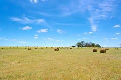 Αυστραλιανό αγροτικό τοπίο τομέων με τις θυμωνιές χόρτου Στοκ Εικόνες