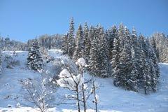 Αυστριακά όρη το χειμώνα Στοκ εικόνες με δικαίωμα ελεύθερης χρήσης