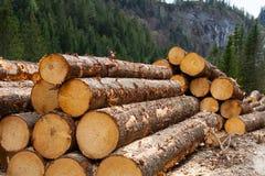 αυστριακή ξυλεία αναγραφών ορών στοκ φωτογραφίες με δικαίωμα ελεύθερης χρήσης