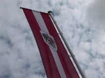 Αυστριακή σημαία που πετά στον αέρα απόθεμα βίντεο