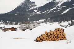 αυστριακός σωρός κούτσο στοκ εικόνες