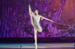 Αυτή η αιώνια ιστορία μπαλέτου Στοκ εικόνα με δικαίωμα ελεύθερης χρήσης
