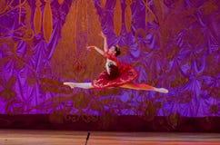 Αυτή η αιώνια ιστορία μπαλέτου Στοκ εικόνες με δικαίωμα ελεύθερης χρήσης