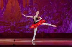 Αυτή η αιώνια ιστορία μπαλέτου Στοκ φωτογραφία με δικαίωμα ελεύθερης χρήσης