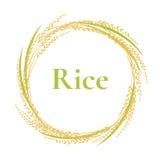 Αυτί του σχεδίου λογότυπων ρυζιού, διάνυσμα πλαισίων κύκλων, εγκαταστάσεις διανυσματική απεικόνιση