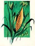 Αυτιά του καλαμποκιού που σύρονται καλλιτεχνικά πράσινος και πορτοκαλής ελεύθερη απεικόνιση δικαιώματος