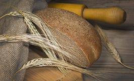 αυτιά ψωμιού στοκ εικόνες με δικαίωμα ελεύθερης χρήσης