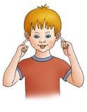 αυτιά Στοκ Εικόνα