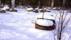 Αυτοκίνητα προφυλακτήρων Pripyat Στοκ εικόνα με δικαίωμα ελεύθερης χρήσης