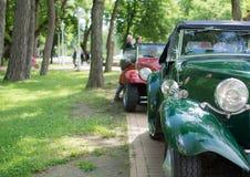 Αυτοκίνητα Oldtimer στο πάρκο διανυσματική απεικόνιση