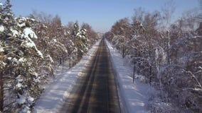 Αυτοκίνητο άποψης κηφήνων που κινείται στη χειμερινή εθνική οδό στα χιονώδη δέντρα υποβάθρου Εναέρια κυκλοφορία αυτοκινήτων άποψη απόθεμα βίντεο