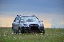 Αυτοκίνητο και φύση Στοκ Εικόνες