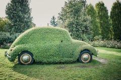 Αυτοκίνητο κανθάρων Στοκ φωτογραφίες με δικαίωμα ελεύθερης χρήσης