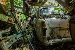 Αυτοκίνητο με το βρύο στο σπίτι στοκ εικόνες