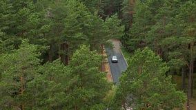 Αυτοκίνητο που περνά από το δρόμο ασφάλτου βαθιά στο δάσος απόθεμα βίντεο