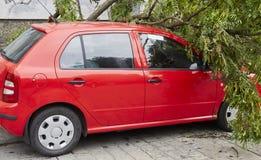 Αυτοκίνητο που συνθλίβεται από τους ισχυρούς άνεμους Στοκ φωτογραφίες με δικαίωμα ελεύθερης χρήσης