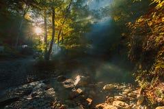 Αυτοκίνητο στο φως του ήλιου, που κάνει τον τρόπο του μέσω της ομίχλης στο υπόβαθρο ενός δάσους βουνών και ενός ποταμού Στοκ Εικόνες