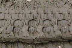 Αυτοκινητικές ρόδες σφραγίδων στο ρύπο Στοκ Φωτογραφίες
