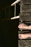 αυτοκτονία ηλιόλουστη Στοκ φωτογραφία με δικαίωμα ελεύθερης χρήσης