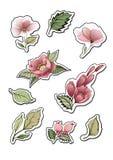 Αυτοκόλλητες ετικέττες λουλουδιών Στοιχεία σχεδίου για τις σημειώσεις ελεύθερη απεικόνιση δικαιώματος