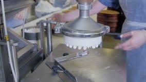 Αυτοματοποιημένη μηχανή παραγωγής κέικ Ζαχαροπλάστες που εργάζονται στα κέικ που παράγουν τον εξοπλισμό στο αρτοποιείο, γραμμή πα απόθεμα βίντεο