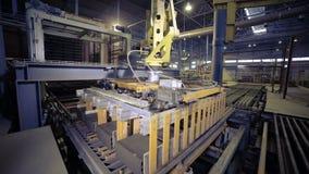 Αυτοματοποιημένος εξοπλισμός μηχανημάτων Ρομποτικά προϊόντα συγκέντρωσης βραχιόνων, τούβλα απόθεμα βίντεο