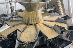 Αυτοματοποιημένο εργοστάσιο τροφίμων στοκ εικόνες με δικαίωμα ελεύθερης χρήσης