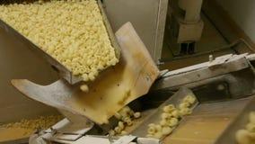 Αυτοματοποιημένο εργοστάσιο τροφίμων απόθεμα βίντεο
