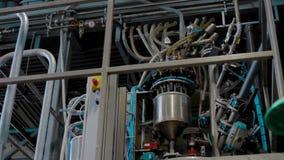 Αυτόματη παραγωγή μηχανών του τοποθετημένου σε στρώματα ξύλου απόθεμα βίντεο