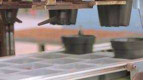 Αυτόματη συσκευασία στην επιχείρηση, αυτοματοποιημένη γραμμή στο εργοστάσιο ανάπτυξης λουλουδιών φιλμ μικρού μήκους