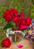 Αυτός ανθοδέσμη που γίνεται με τα κόκκινα τριαντάφυλλα σε ένα βάζο γυαλιού Στοκ Εικόνες