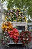 Αυτός φεστιβάλ λουλουδιών της Μαδέρας, Φουνκάλ, Μαδέρα, Πορτογαλία Στοκ Εικόνες
