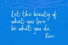 Αυτό που κάνετε τη Rumi στοκ εικόνες με δικαίωμα ελεύθερης χρήσης
