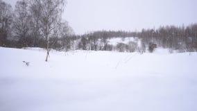 Αυτό ` s που χιονίζει έξω από την πόλη φιλμ μικρού μήκους